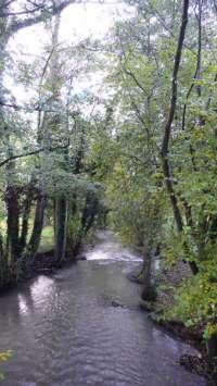 La Calonne à Bonneville-la Louvet